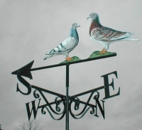 Pigeons, painted,
