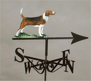 Beagle painted