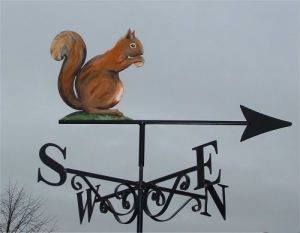 Squirrel painted